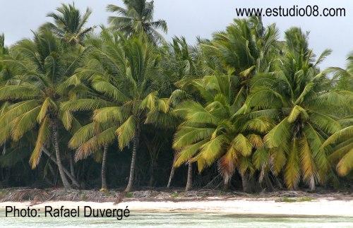 Detalle parte de la Zona Costera Región Éste - La Romana