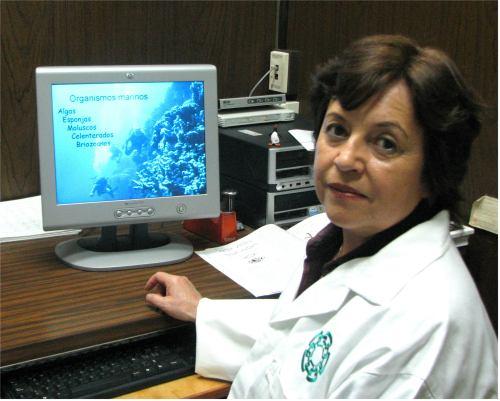 Como se diagnostica el Alzheimer